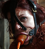 Roped, clamped, gagged, caned, vibed